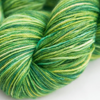 Parklife superwash wool-nylon 4-ply yarn