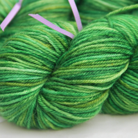 SALE SPECIAL Leapfrog - Superwash bluefaced Leicester DK yarn