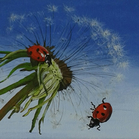 Ladybirds on dandelion painting
