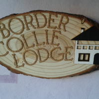 border collie lodge