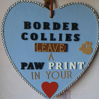 Border Collie love heart