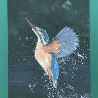 Kingfisher painting print