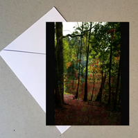 Into Autumn card
