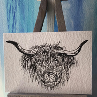 Highland cattle No. 1