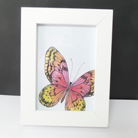 Butterfly Frame 3