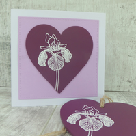 Purple Iris Gift Set