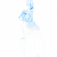 Giclee Print - 'The Blue Hare' A3 size