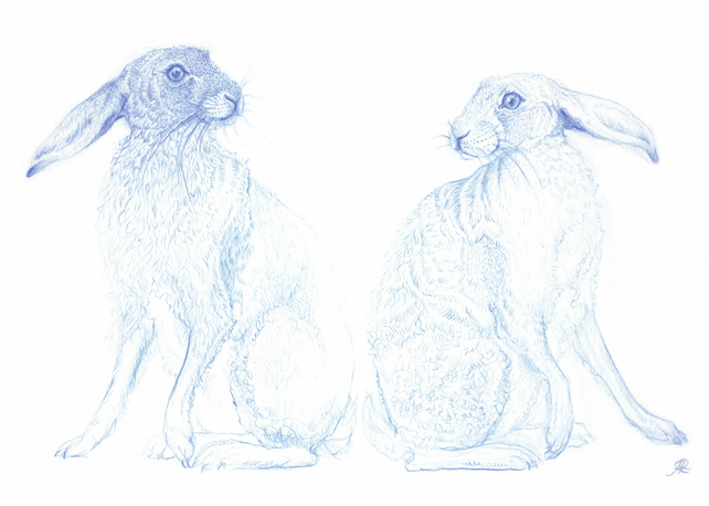 A4 Giclee Print - 'Two Blue Hares'