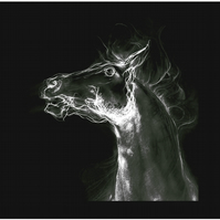 Greeting Card - 'Harbinger' Horse white on black