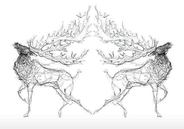 Two Stags B&W A4 print
