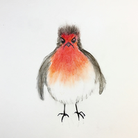 Unimpressed Robin Christmas card
