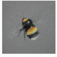 Bumble Bee tiny print