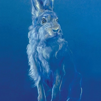 Mountain Hare King A4 prints