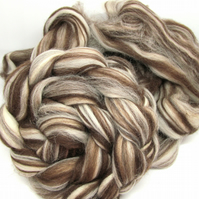 Corriedale Humbug Combed Wool Top 100g 3.5oz Spinning Felting