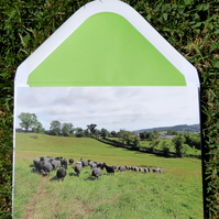 Little Whitehall Farm Greeting Card