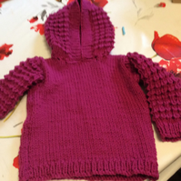 22 inch Raspberry Hooded Jumper