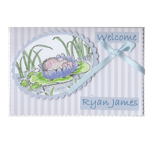 Hedgehog in the Bullrushes - New Baby Card (BB173)