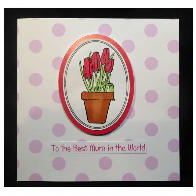 Pot of Tulips for Mum (MD452)