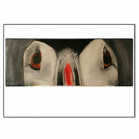 A4 Puffin Signed Print