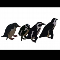 A4 Penguin's walking signed print