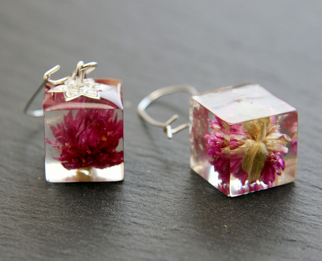 Real Dried Pink Amaranth Flowers Earrings Cube 3D Resin Elegant Long Romantic
