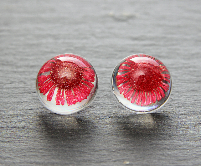 Real Dried Pink Daisy Pressed Flowers Resin Studs Earrings Botanical jewellery