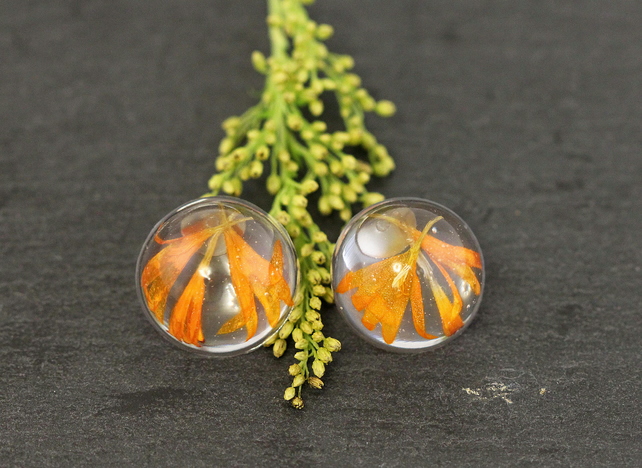 Real Marigold Flowers Resin Studs Earrings Pressed Dried Orange Tagetes Nature