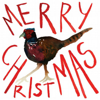 10 Pheasant Christmas cards, set of cards, watercolour, Pack of Christmas cards