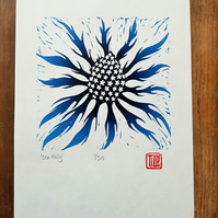 Sea Holly Lino print, lino cut, printmaking, prussian blue, thistle