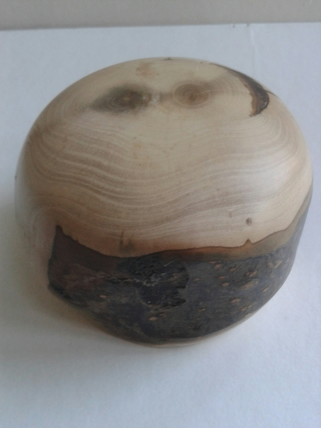 Holly Wood Paperweight 773