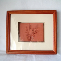 impressed terracotta tile in a box frame, 10 x 12 inches