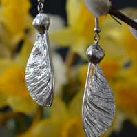 Sycamore seed pod pewter earrings