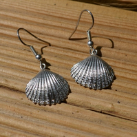 Cockle shell pewter earrings