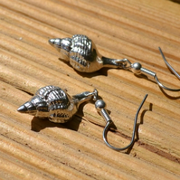 Whelk shell pewter earrings