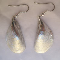 Textured mussel shell pewter earrings