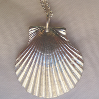 Small scallop shell pewter pendant necklace with sterling silver chain