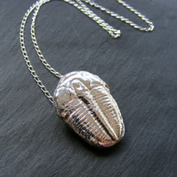 Pendant in Sterling Silver Cast Trilobite Fossil 18 Inch Chain 16.4g Hall Marked
