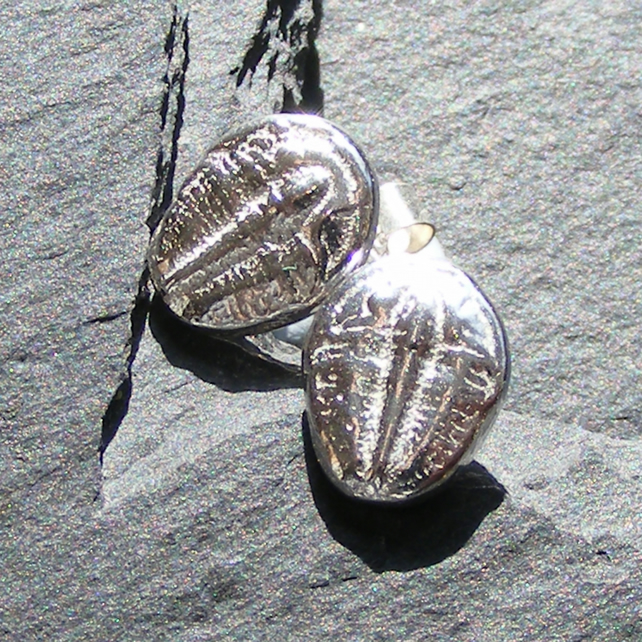 Sterling Silver Stud Earrings with Cast Trilobite Fossils Hand Forged Hand Made