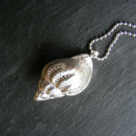 Pendant and Chain in Sterling Silver with Cast Sea Shell Hall Marked