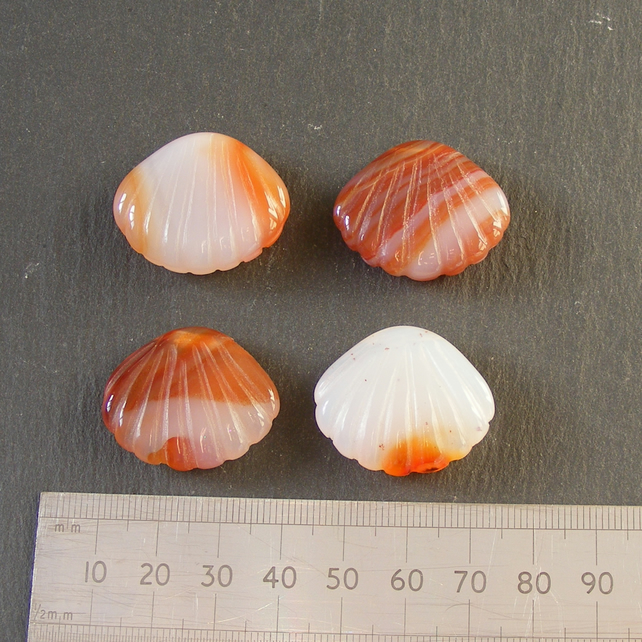 Four x Carved Carnelian Sea Shell Focal Beads For Jewellery Making or Crafts