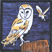 Barn Owl lino print, limited edition