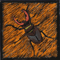 Stag beetle lino print, limited edition