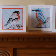 Set of 4 bird gift cards: King fisher, Brambling, Bull finch and Bluetit