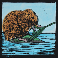 Water Vole lino print, limited edition