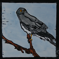Hen harrier lino print, limited edition