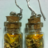 Charm  Bottle Earrings