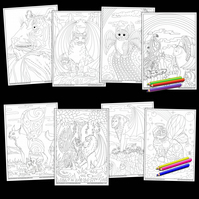 8 Big Cats and Kitties Printable Colouring pages Digital download PDF