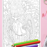 Stag Deer Colouring Page Printable PDF digital download