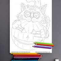 Pumpkin Cat Colouring Page Printable PDF Digital download Halloween activities