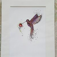 Pink Hummingbird 12 x 15'' mounted, ready to frame limited edition print
